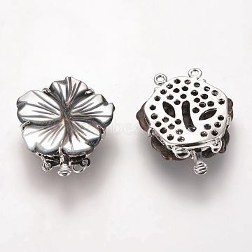 Black Lip Shell Box Clasps, with Brass Findings, Flower, Platinum, 2-Strands, 4-Holes, 30x25~26x5~6mm, Hole: 1.5~2.5mm(SSHEL-E575-E02-01)