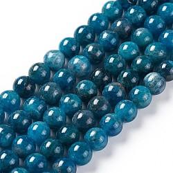 """Chapelets de perles en apatite naturelle, rond, 8mm, trou: 1mm; environ 49 pcs/chapelet, 15.5"""" (39.5 cm)(G-F617-01-8mm)"""