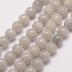 Natural Labradorite Bead Strands, Round, 6mm, Hole: 1mm; about 62pcs/strand, 15.5''