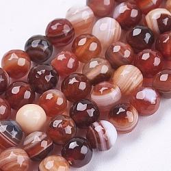 """Chapelets de perles en agate à rayures naturelles/agates à bandes, rond, facette, teint, brun, 6mm, trou: 1mm; environ 62 pcs/chapelet, 14.5"""" (37 cm)(G-P364-24-6mm)"""