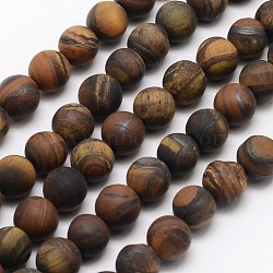 Natural Tiger Eye Beads Strands, Frosted, Round, 10mm, Hole: 1mm; about 38pcs/strand, 13.9inches