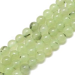 Chapelets de perles en préhnite naturelle, teint, rond, 6mm, trou: 1mm; environ 68 pcs/chapelet, 15.7''(X-G-S300-118-6mm)