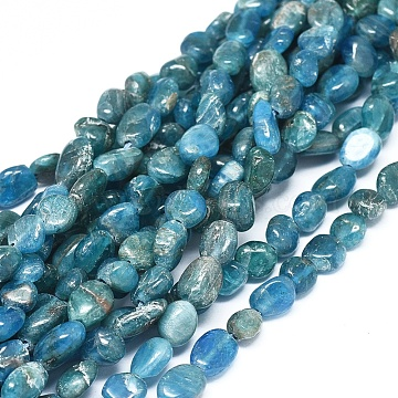 Natural Apatite Beads Strands, Chip, 6~10x5~7x3~4.5mm, hole: 0.7mm, about 55pcs/Strand, 15.94''(40.5cm) (G-D0004-A02-01)