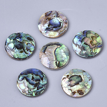 Natural Abalone Shell/Paua Shell Cabochons, with Freshwater Shell, Flat Round, Colorful, 16x3mm(X-SSHEL-N034-45)