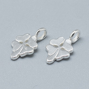 925 Sterling Silver Charms(STER-T002-91S)-2