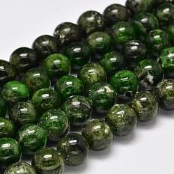 brins ronds de perles de diopside vert naturel, 10 mm, trou: 1 mm; environ 40 perle / brin, 15.5(G-F289-20-10mm)