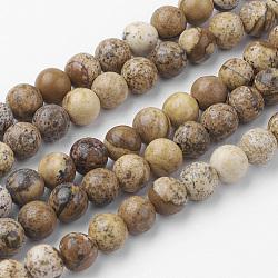 Chapelets de perle en jaspe avec images naturelles, rond, 6~6.5mm, trou: 1mm; environ 60 pcs/chapelet, 14.9'' (38 cm)(G-G735-16-6mm)
