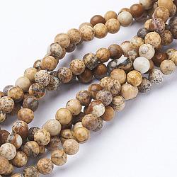 """Perles en pierres gemme, image naturelle jaspe, rond, environ 4 mm de diamètre, trou: environ 0.8 mm, 15~16""""(X-GSR4mmC016)"""