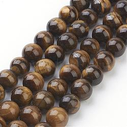 Natural Tiger Eye Beads Strands, Grade AB+, Round, DarkGoldenrod, 10mm, Hole: 1mm