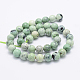 Natural Turquoise Beads Strands(G-J373-03-9.5mm)-3
