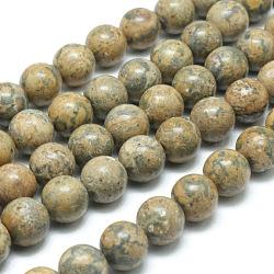 """Ronds de perles de pierres précieuses de jaspe de peau jaune léopard naturel, 8mm, trou: 1mm; environ 48 pcs/chapelet, 15.7""""(G-J302-12-8mm)"""