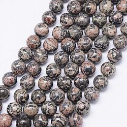 brins de perles de jaspe en peau de léopard naturel, arrondir, 8 mm, trou: 1 mm; environ 46 perle / brin, 15.74(X-G-F425-13)