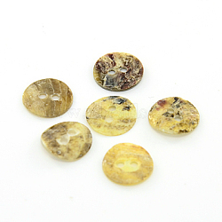 boutons de nacre, bouton shell akoya, plat rond, couleur mélangée, 10x1 mm, trou: 1 mm(SHEL-J001-M11)