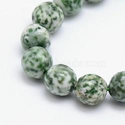 """Chapelets de perles en jaspe à pois verts naturels, rond, facette, 14mm, trou: 1mm; environ 28 pcs/chapelet, 15.5""""(G-L148-14mm-01)"""