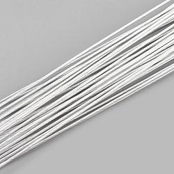 железная проволока, WhiteSmoke, 18 датчик, 1 мм; 80 см / нитка; 50 нить / мешок(MW-S002-01F-1.0mm)
