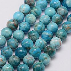 """Chapelets de perles en apatite naturelle, rond, 10mm, trou: 1mm; environ 40 pcs/chapelet, 15.7""""(G-D856-01-10mm)"""