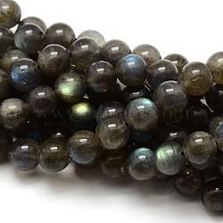 Grade AA Natural Gemstone Labradorite Round Beads Strands, 8mm, Hole: 1mm; about 48pcs/strand, 15.5