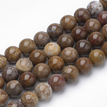 Natural Petrified Wood(Import from America) Beads Strands, Round, 10~10.5mm, Hole: 1.2mm, about 36pcs/strand, 15.5 inches(G-Q462-136-10mm)