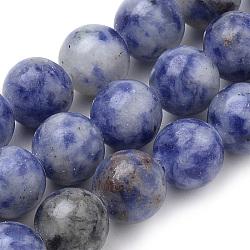 """Brins naturels de perles de sodalite du Brésil, rond, 8mm, trou: 1mm; environ 50 pcs/chapelet, 15.7""""(G-S259-36-8mm)"""