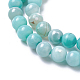 Natural Dyed Agate Imitation Turquoise Beads Strands(X-G-P425-02A-8mm)-3