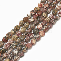 Chapelets de perles de jaspe en peau de léopard naturel, nuggets, 4~15x4~8x3~7mm, trou: 1mm; environ 40~70 pcs/chapelet, 15.7''(G-S301-53)