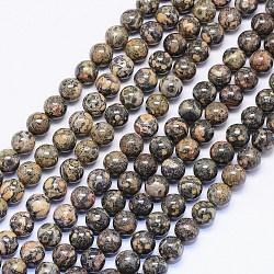 "Brins de perles de jaspe en peau de léopard naturel, rond, 8mm, trou: 1mm; environ 50 pcs/chapelet, 15.74""(G-F425-15)"