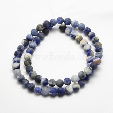 Natural Sodalite Beads Strands(G-J364-01-12mm)-2