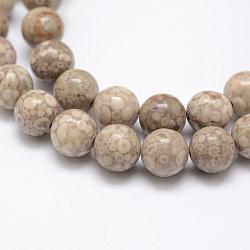 Chapelets de perles en pierre de chrysanthème naturel, rond, 8mm, trou: 1mm; environ 48 pcs/chapelet, 15.3'' (39 cm)(G-G735-52-8mm)