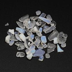 Perles de pépites d'opalite, pas de trous / non percés, 2~10x4~12mm(G-M229-02)