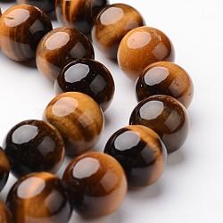 """Chapelets de perle ronde en œil de tigre naturel, Grade a, 10mm, trou: 1mm; environ 38~39 pcs/chapelet, 15""""(G-J346-13-10mm)"""