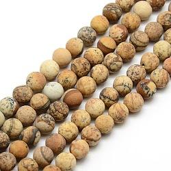 """Chapelets de perles rondes en jaspe mat avec image naturelle, 4mm, trou: 1mm; environ 93~96 pcs/chapelet, 14.9~15.6""""(G-M064-4mm-05)"""