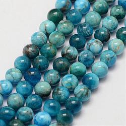 """Chapelets de perles en apatite naturelle, rond, 6.5mm, trou: 1mm; environ 62 pcs/chapelet, 15.7""""(G-D856-01-6.5mm)"""