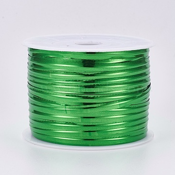 Plastic Wire Twist Ties, with Iron Core, Green, 4x0.2mm, about 100yards/roll(300 feet/roll)(AJEW-WH0092-06B)