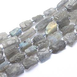 Chapelets de perles en labradorite naturelle , nuggets, 15~17x9~10x6~8mm, trou: 1.4mm; environ 24 pcs/chapelet, 14.9'' (38 cm)(G-G764-10)