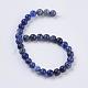 Natural Sodalite Beads Strands(X-G-G515-6mm-07)-2