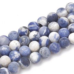 """Chapelets de perles en sodalite naturelle, mat, rond, 8mm, trou: 1mm; environ 47 pcs/chapelet, 15.5""""(G-T106-213)"""