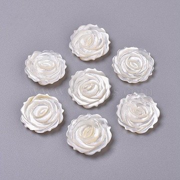 Natural White Shell Mother of Pearl Shell Cabochons, Rose, 20.5x3mm(SSHEL-L013-10)