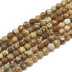 """Chapelets de perles en jaspe avec images naturelles, facette, rond, 3~3.5mm, trou: 0.3mm; environ 113 pcs/chapelet, 14.9""""(G-S300-01-3mm)"""