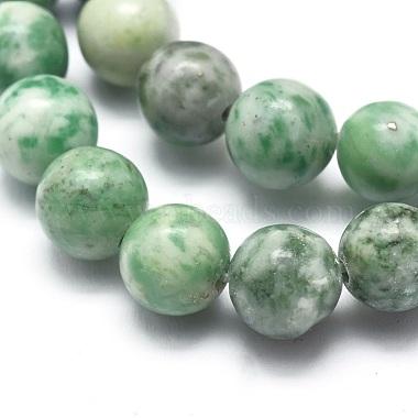 Natural Qinghai Jade Beads Strands(G-I254-06B)-3