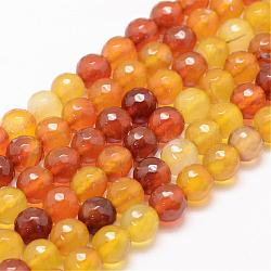 Natural Agate Bead Strands, Round, Faceted, Dyed & Heated, Goldenrod, 14mm, Hole: 1mm; about 27~28pcs/strand, 14.5inches