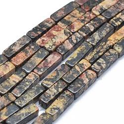 perles de jaspe en peau de léopard naturel, cuboïde, 12.5~13.5x3~5x3~4.5 mm, trou: 1 mm; environ 30~32 perle / brin, 15.1~15.9 (38.5~40.5 cm)(G-F631-E17)