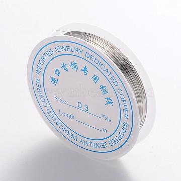 0.3mm Silver Copper Wire