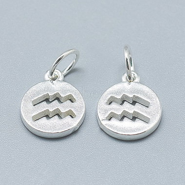 925 Sterling Silver Charms(STER-T002-44S-04)-2