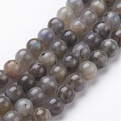 Natural Labradorite Bead Strands, Round, 12mm, Hole: 1mm; about 32pcs/strand, 15.3inches(390mm)