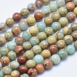 """Chapelets de perles en jaspe aqua terra naturel, rond, 6mm, trou: 1mm; environ 62 pcs/chapelet, 15.7"""" (40 cm)(G-E444-14B-6mm)"""