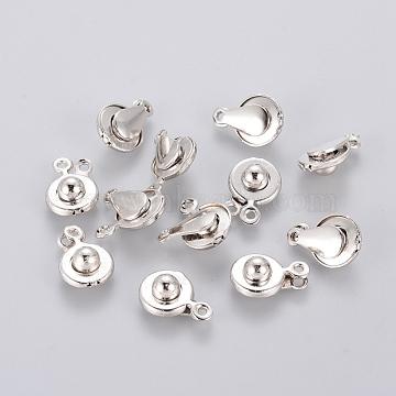 Platinum Iron Clasps