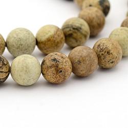"""Image naturelle perles rondes de jaspe brins, 8mm, trou: 1mm; environ 49 pcs/chapelet, 15.7""""(X-G-G-P070-55-8mm)"""