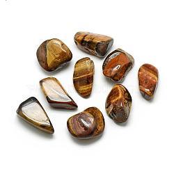 Perles naturelles de pierres précieuses, nuggets, pas de trous / non percés, 20~37x16~22x9~17mm(G-S218-20)