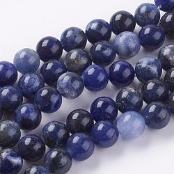 """Chapelets de perles en sodalite naturelle, rond, 8mm, Trou: 1mm, Environ 24 pcs/chapelet, 7.6""""(G-G515-8mm-07)"""