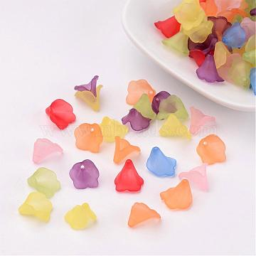 Transparent Frosted Acrylic Beads, Dyed, Flower, Mixed Color, about 9~10mm long, 9~10mm wide, hole: 1mm(X-PL620)